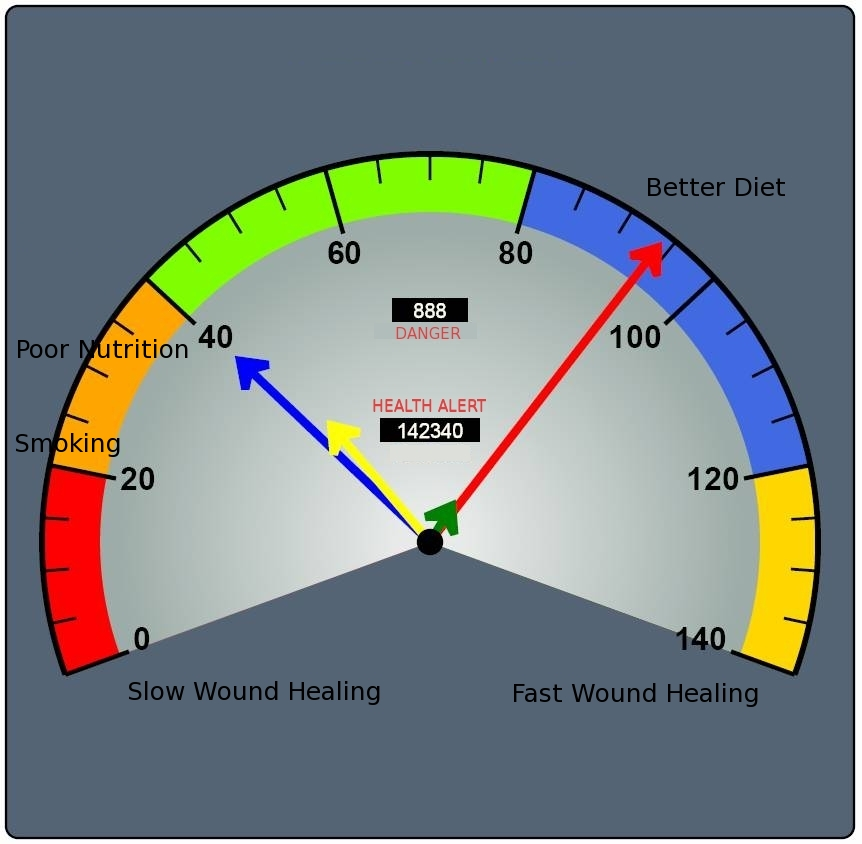 Wound Care Health Meter